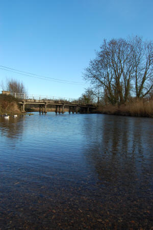 River Wensum at Ringland